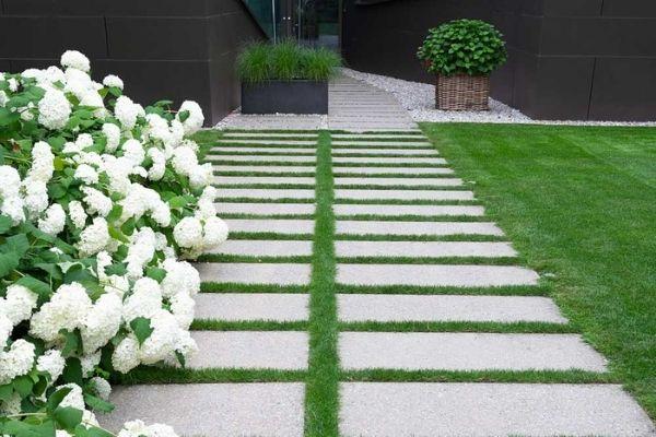 Service landscape Design Company