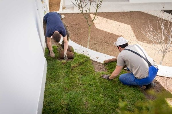 landscaper laying turf residential project